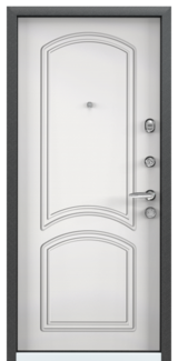 Дверь Torex Super Omega-10 Черный шелк RP3 Белый RS6