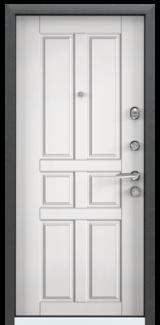 Дверь Torex Super Omega-10 Черный шелк RP3 Белый RS8