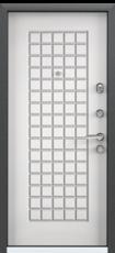 Дверь Torex Super Omega-10 Черный шелк VDM1 Белый RS5