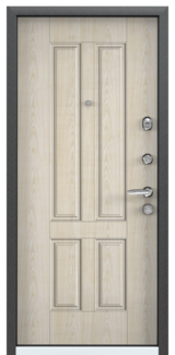 Дверь Torex Super Omega-10 Черный шелк RP2 Дуб бежевый RS7